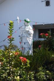 St. Francis at Christmas, Hawaii (2011)